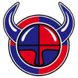 Viikingit Jääkiekko - logo