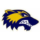 Helsinki Wolverines ry - logo