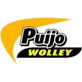 Puijo Wolley - logo