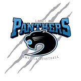 Panthers - logo