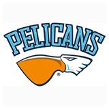 Lahden Pelicans - logo