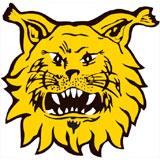 Ilves - logo